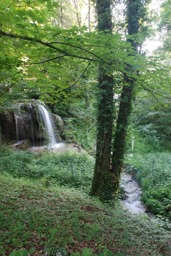 Inventaire  du patrimoine naturel de Collonges sous Salève